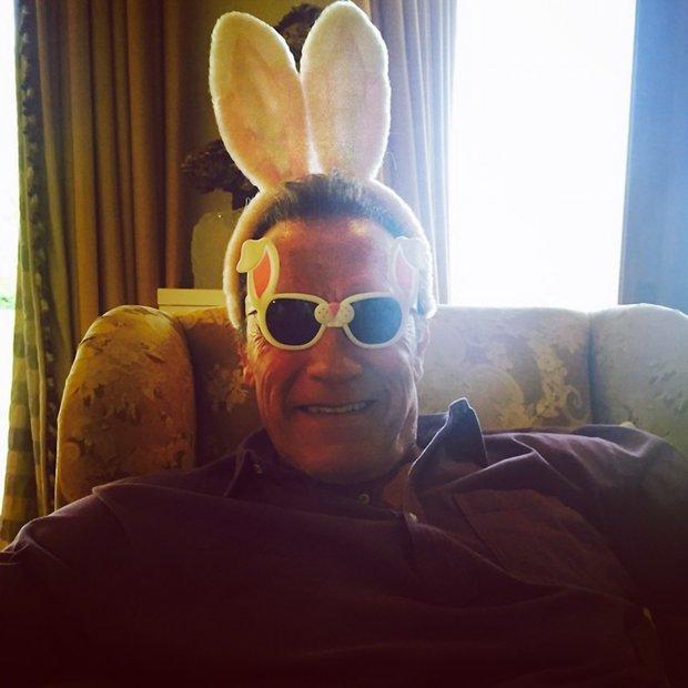 Tak tohle nás dostalo –  Arnold Schwarzenegger jako zajíček :-) Foto: