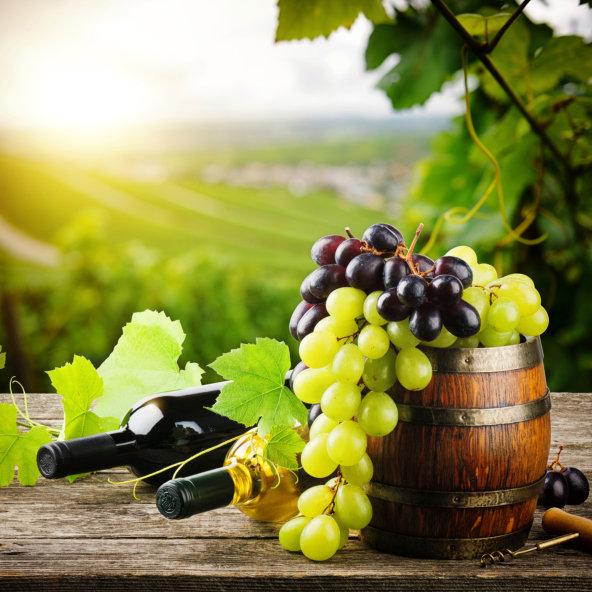 obrázek víno